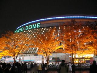 081127_oda_dome02.jpg