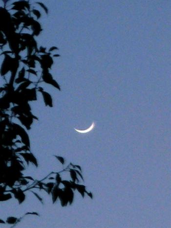 100118_moon02.jpg