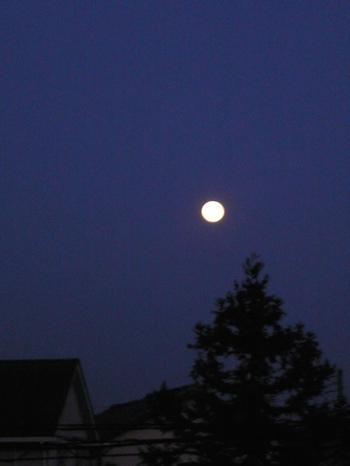 100228_moon01.jpg