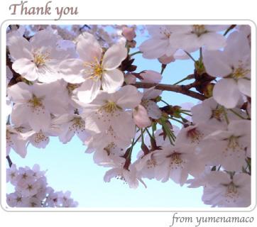 100327_thanks01.jpg