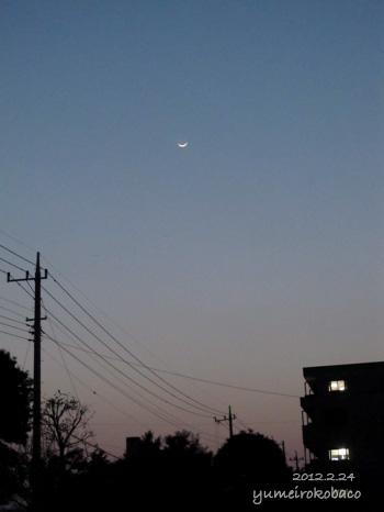 10120224_moon01.jpg
