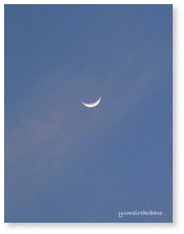110408_moon02.jpg