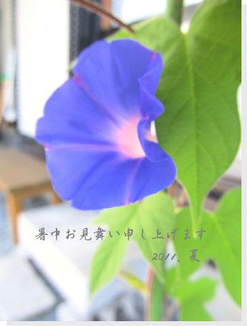 110724_01.jpg