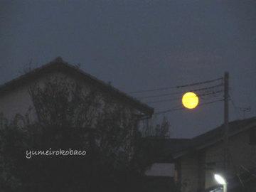 110913_moon02.jpg