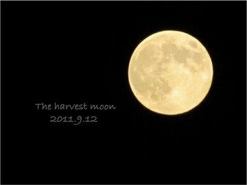 110921_moon02.jpg