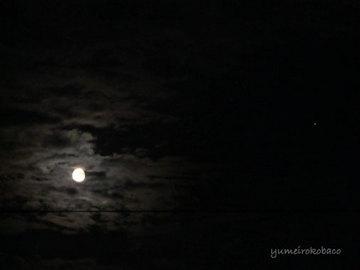 111110_moon01.jpg