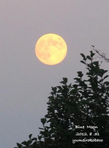 20120831_moon01.jpg