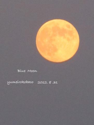 20120831_moon02.jpg