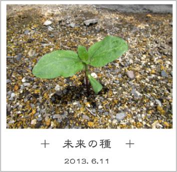 20130611_mirai01.jpg
