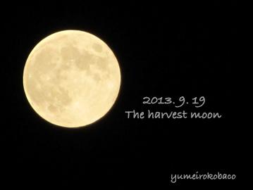 20130919_moon01.jpg