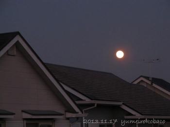 20131117_moon02.jpg