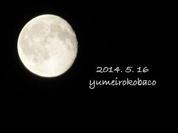 2014050516_moon02.jpg
