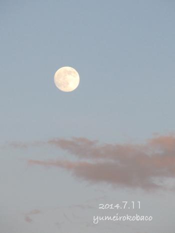 20140711_moon01.jpg