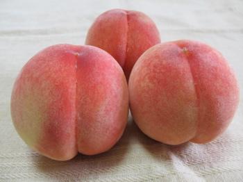 2014_peach01.jpg