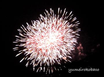 hanabi2013_05.jpg