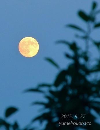 moon_20150927_01.jpg